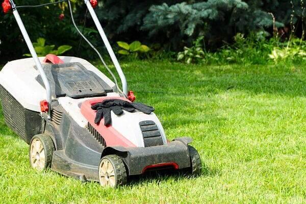 Nincs eszköz: Így nehéz a kert, üres, vagy eladó telek fűnyírás, gazvágás, parlagfű irtás.